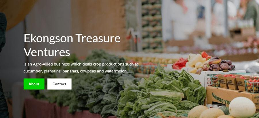 Ekongson Treasure Ventures